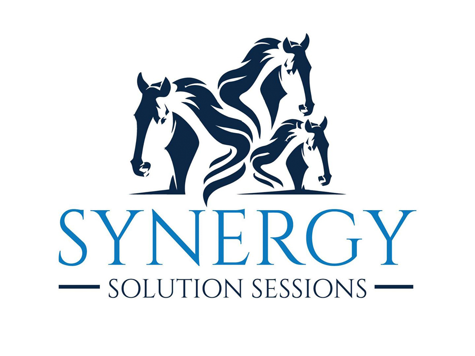 synergy solution sessions